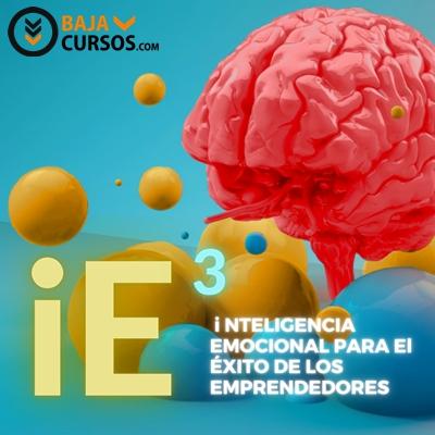 Inteligencia Emocional – i11